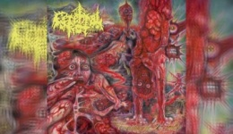 CEREBRAL ROT – Excretion Of Mortality