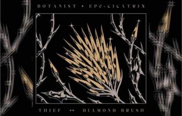 BOTANIST / THIEF  -Cicatrix / Diamond Brush